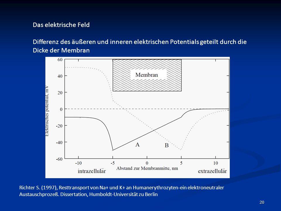 Das elektrische Feld Differenz des äußeren und inneren elektrischen Potentials geteilt durch die Dicke der Membran.