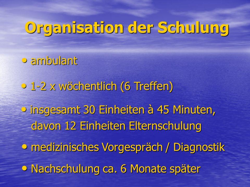 Organisation der Schulung