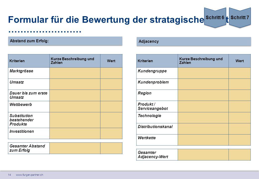 Formular für die Bewertung der stratagischen Option: ……………………