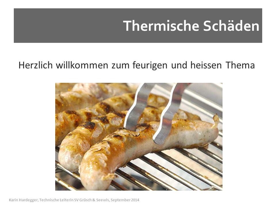 Thermische Schäden Herzlich willkommen zum feurigen und heissen Thema.