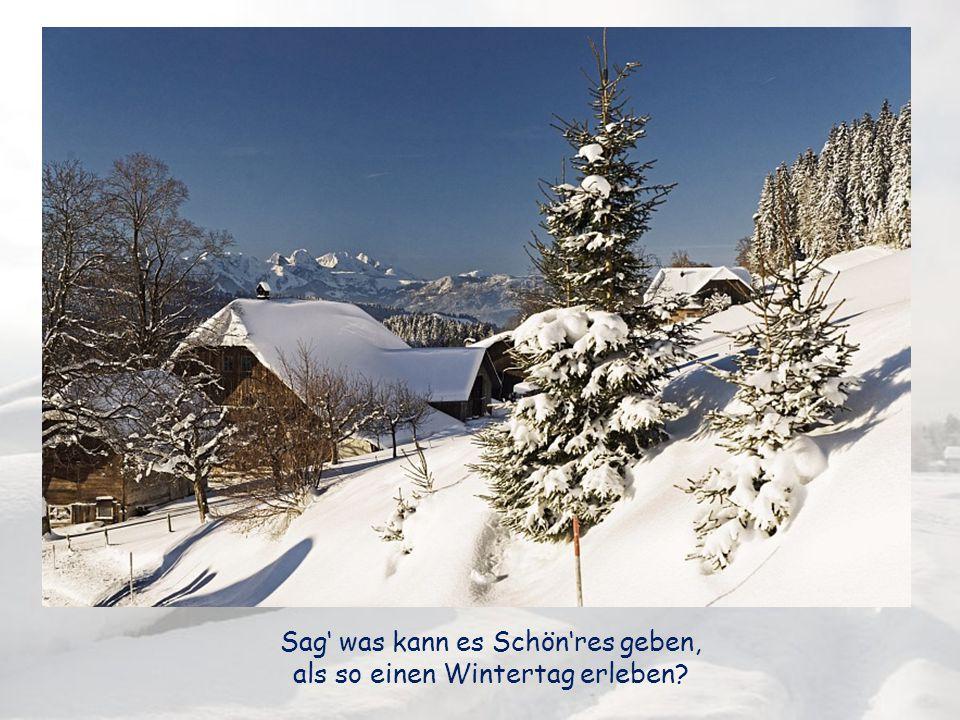 Sag' was kann es Schön'res geben, als so einen Wintertag erleben