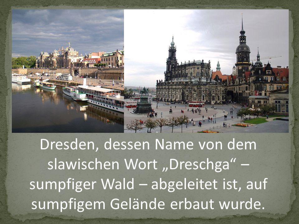 """Dresden, dessen Name von dem slawischen Wort """"Dreschga – sumpfiger Wald – abgeleitet ist, auf sumpfigem Gelände erbaut wurde."""