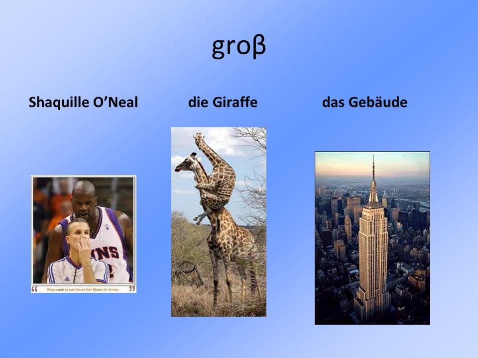 groβ Shaquille O'Neal die Giraffe das Gebäude