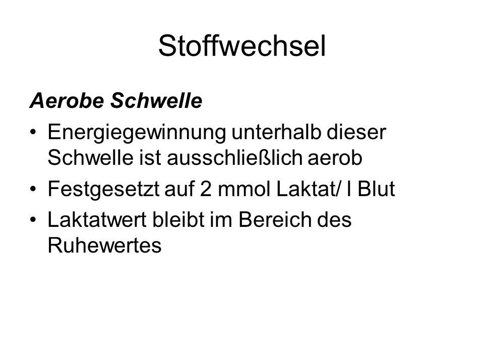 Stoffwechsel Aerobe Schwelle