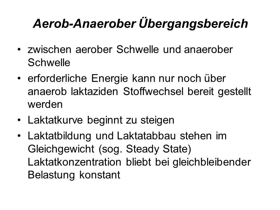 Aerob-Anaerober Übergangsbereich