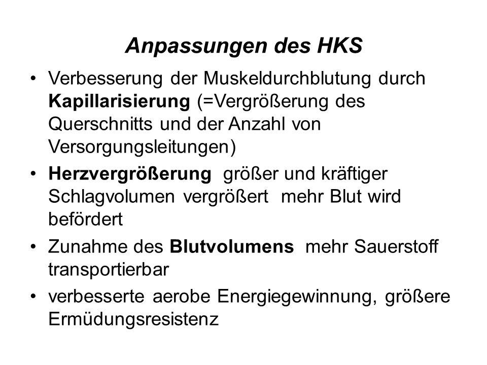 Anpassungen des HKS