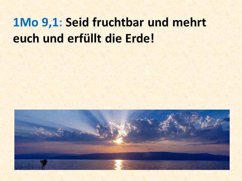 1Mo 9,1: Seid fruchtbar und mehrt euch und erfüllt die Erde!