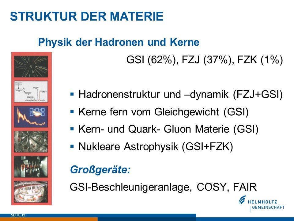 STRUKTUR DER MATERIE Physik der Hadronen und Kerne