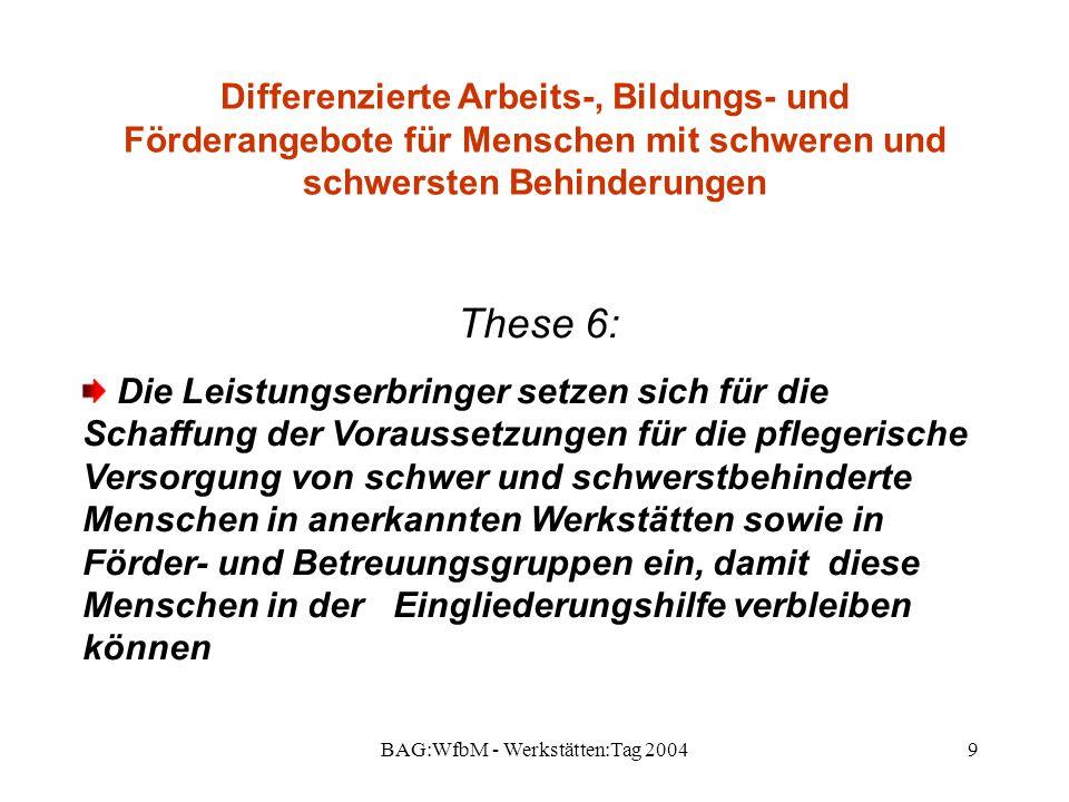 BAG:WfbM - Werkstätten:Tag 2004