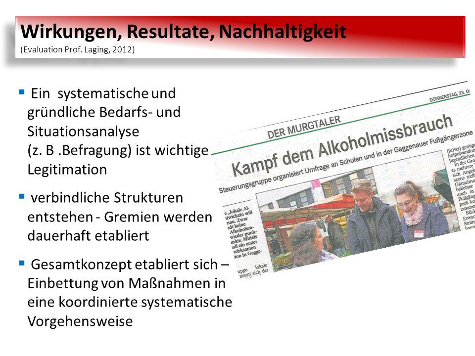 Wirkungen, Resultate, Nachhaltigkeit (Evaluation Prof. Laging, 2012)