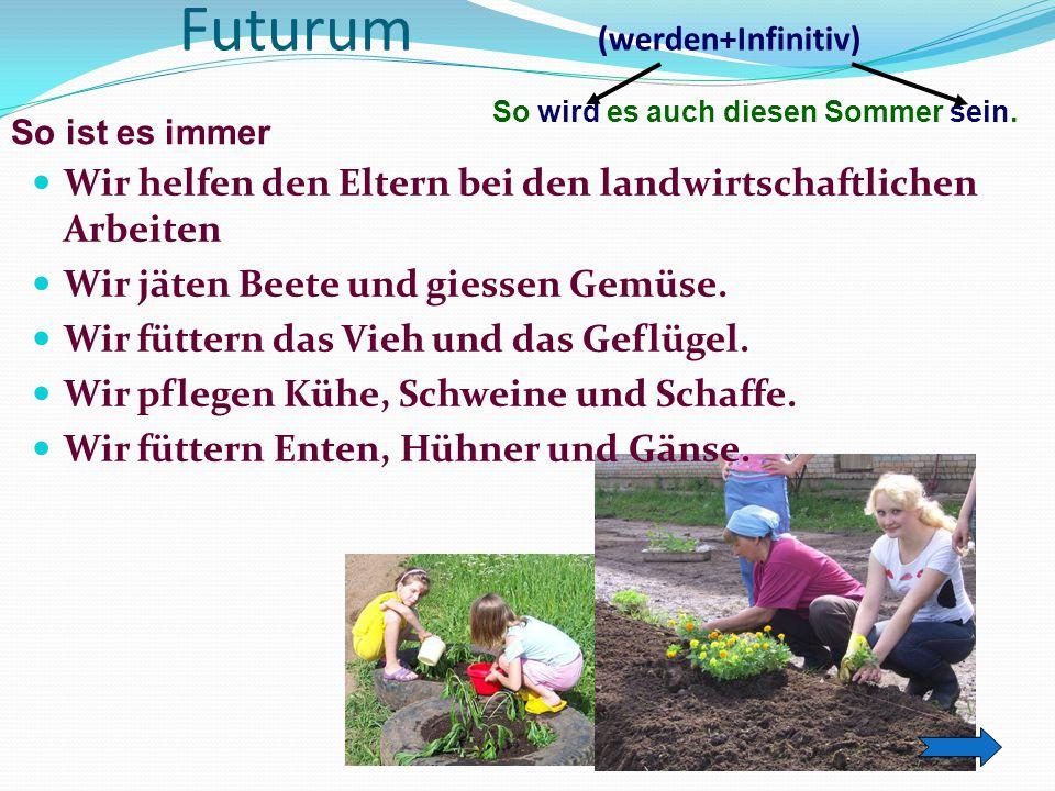Futurum (werden+Infinitiv)