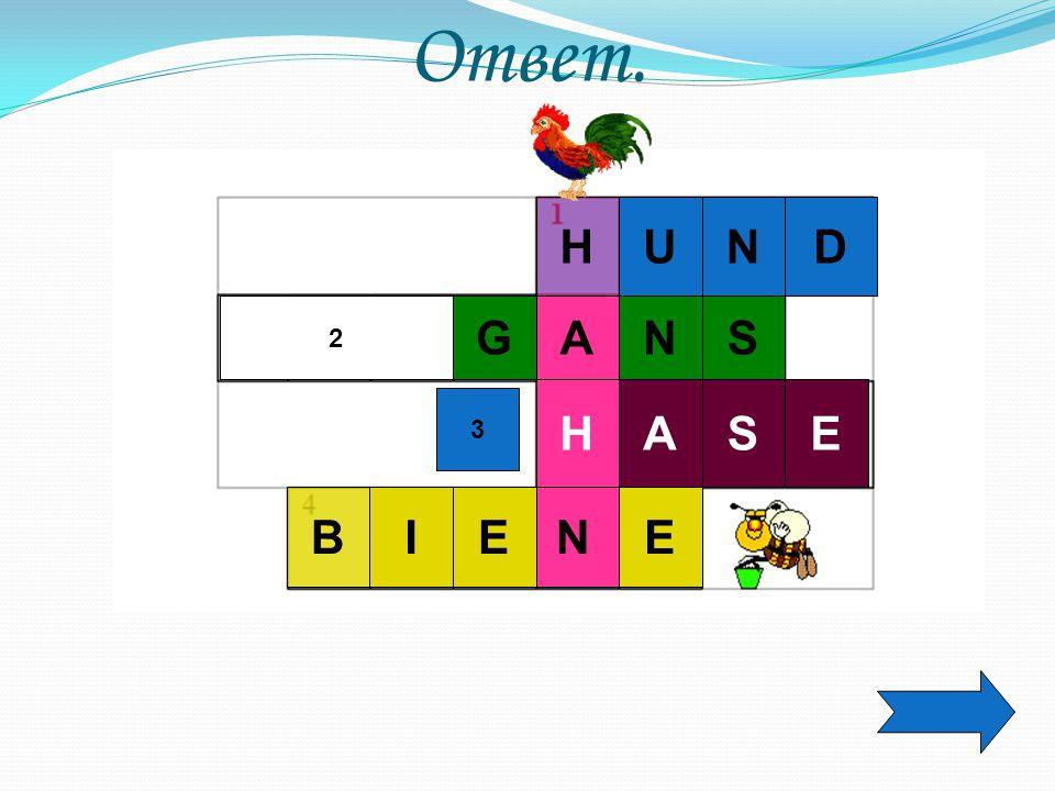Ответ. H U N D 2 G A N S H A S E 3 B I E N E