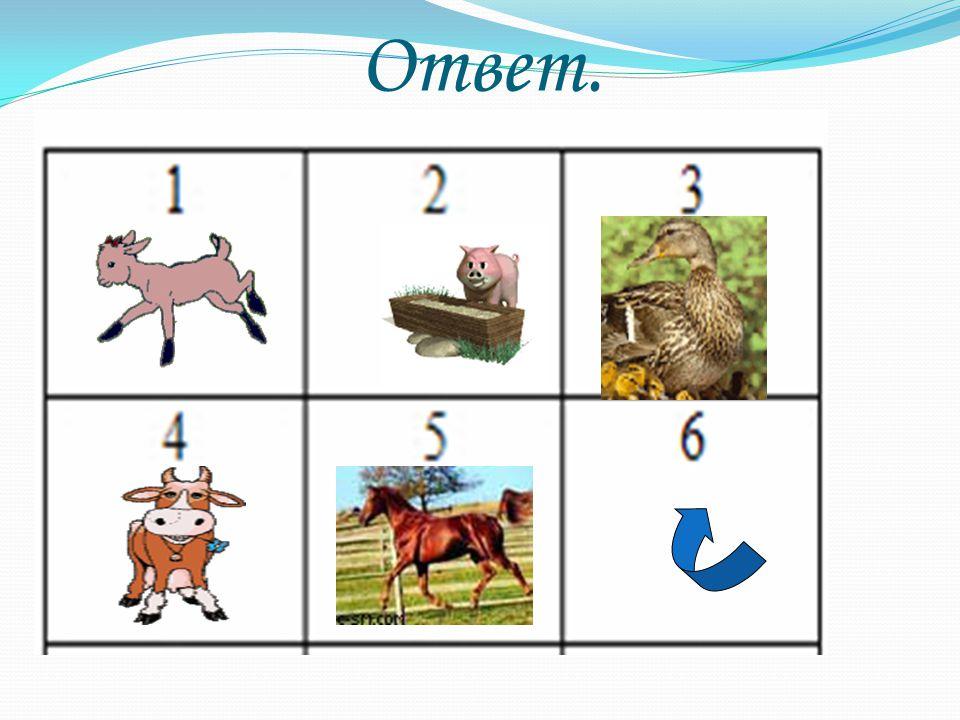 Ответ. Щелкнуть по квадратикам, открывается картинка