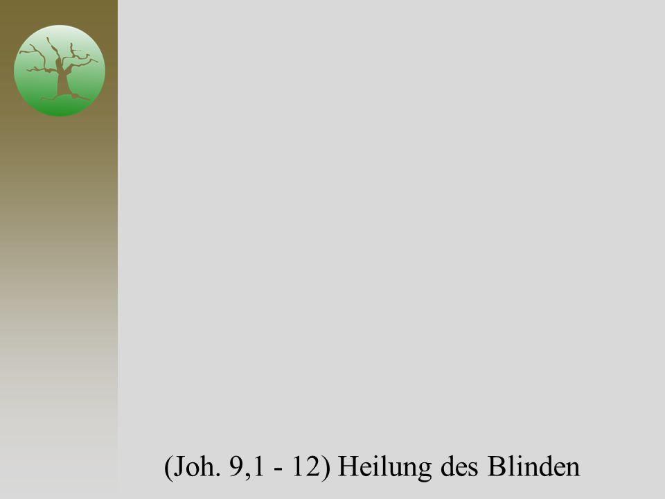 (Joh. 9,1 - 12) Heilung des Blinden