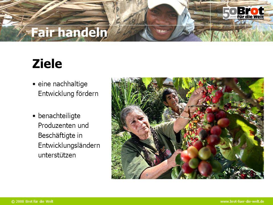 Ziele eine nachhaltige Entwicklung fördern