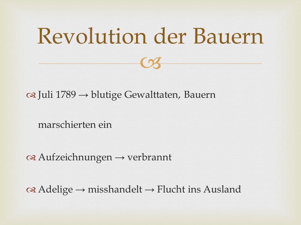 Revolution der Bauern Juli 1789 → blutige Gewalttaten, Bauern marschierten ein. Aufzeichnungen → verbrannt.