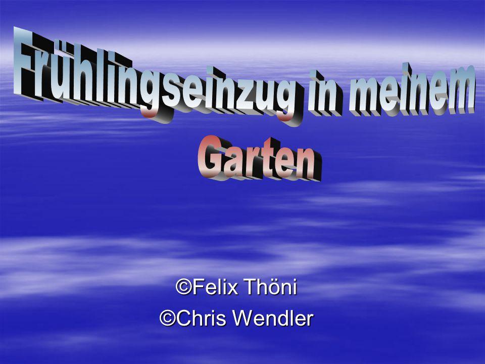 ©Felix Thöni ©Chris Wendler