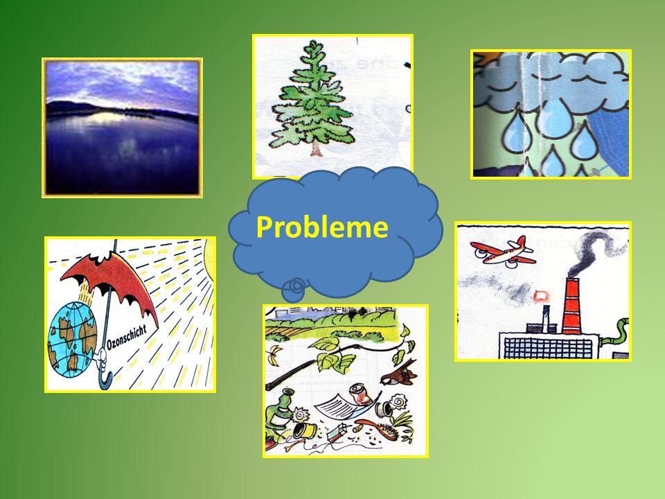 Probleme Ozonloch Luftverschmutzung Wasserverschmutzung saurer Regen