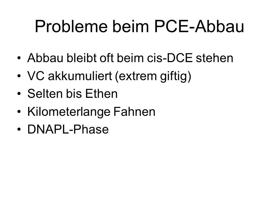 Probleme beim PCE-Abbau