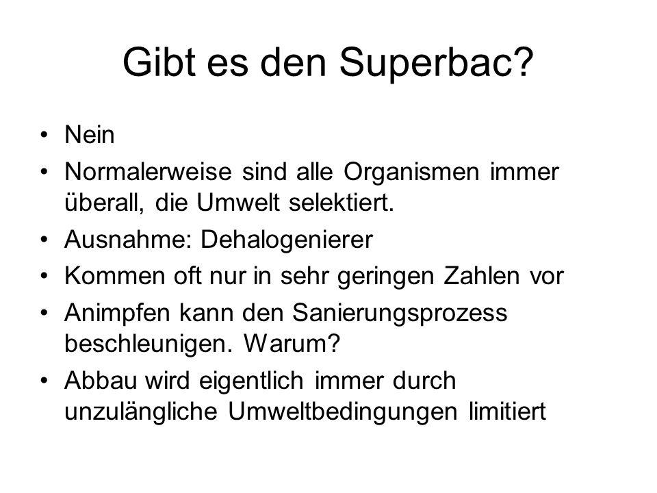 Gibt es den Superbac Nein