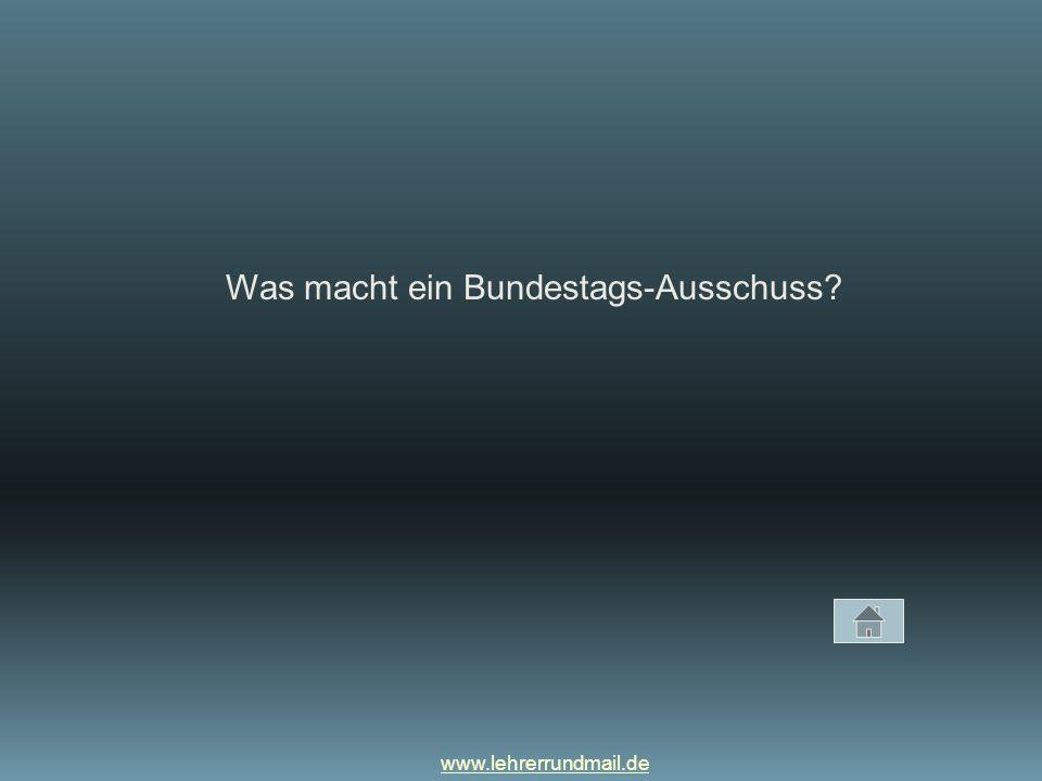 Was macht ein Bundestags-Ausschuss