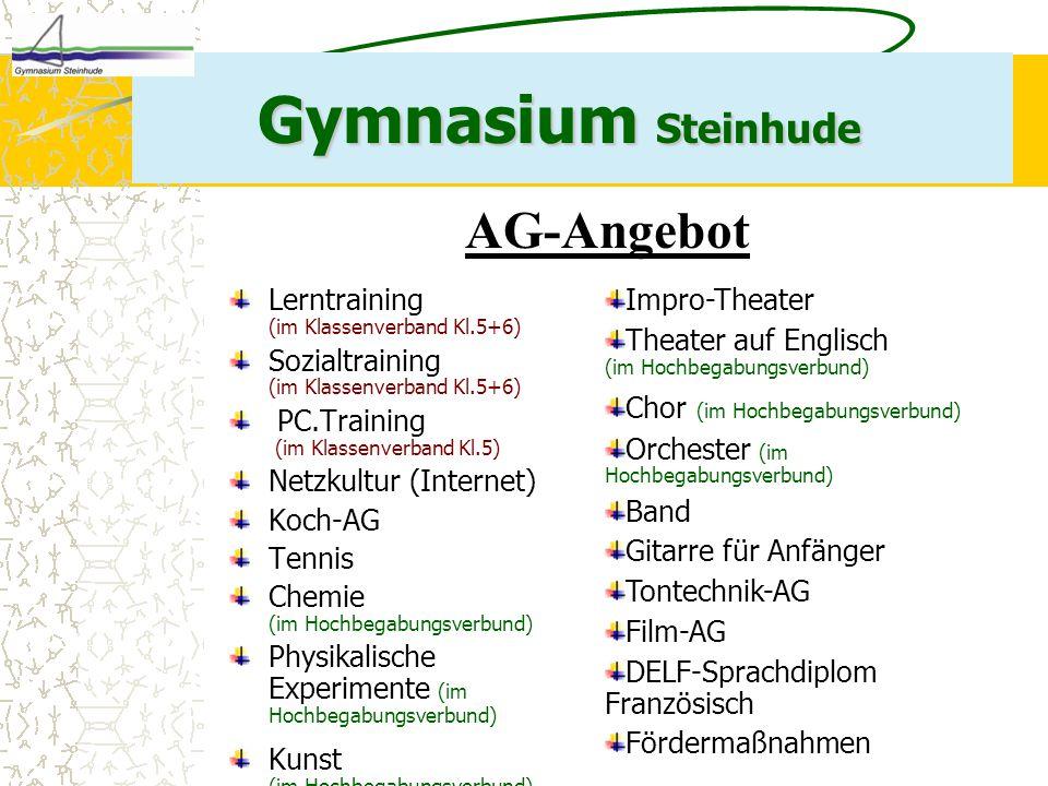 Gymnasium Steinhude AG-Angebot Lerntraining (im Klassenverband Kl.5+6)