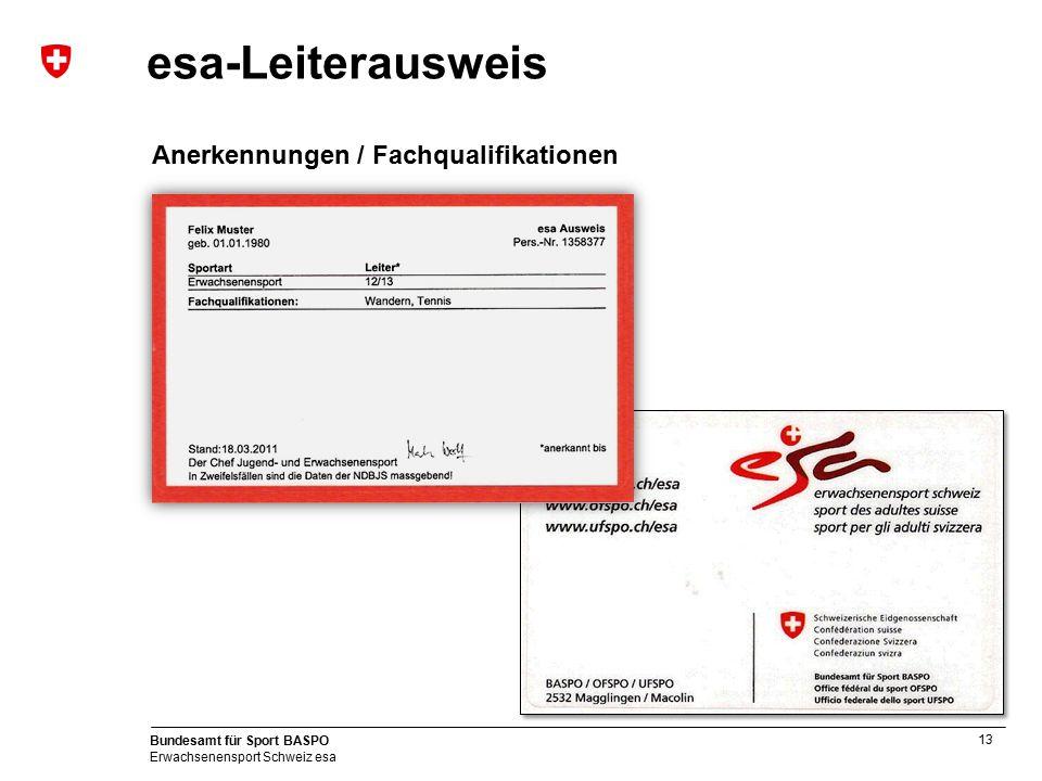 esa-Leiterausweis Anerkennungen / Fachqualifikationen