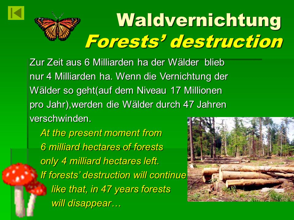 Waldvernichtung Forests' destruction