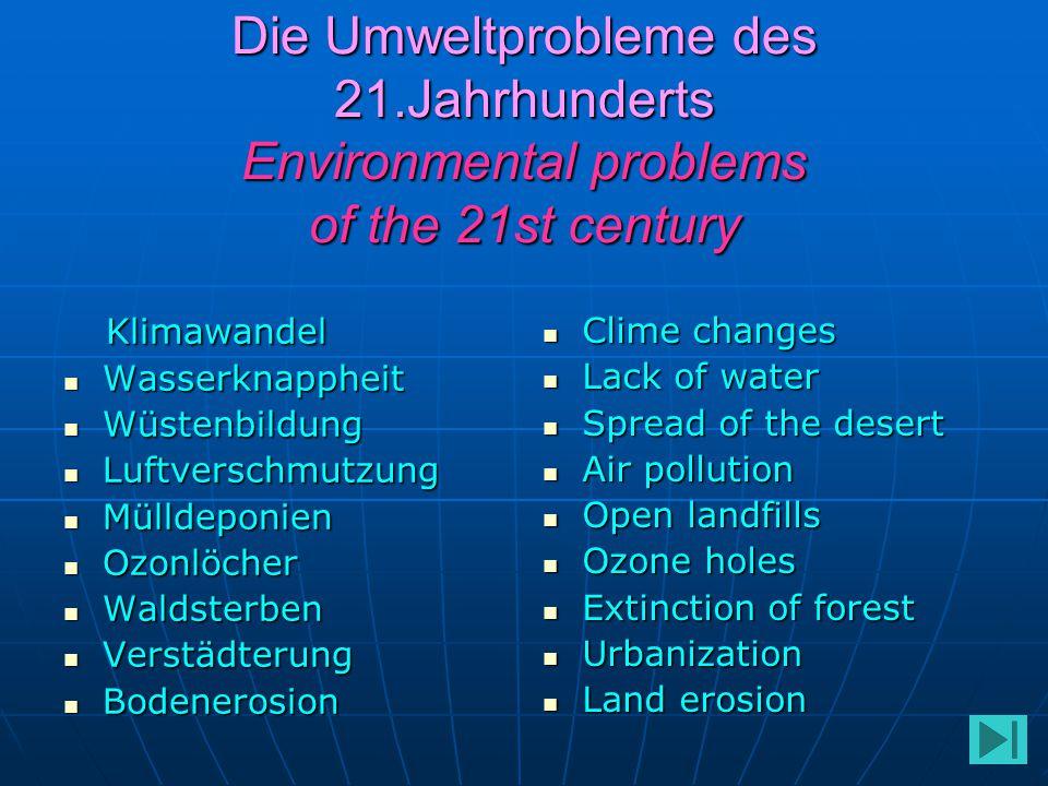 Die Umweltprobleme des 21