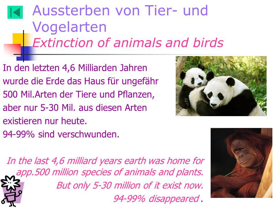 Aussterben von Tier- und Vogelarten