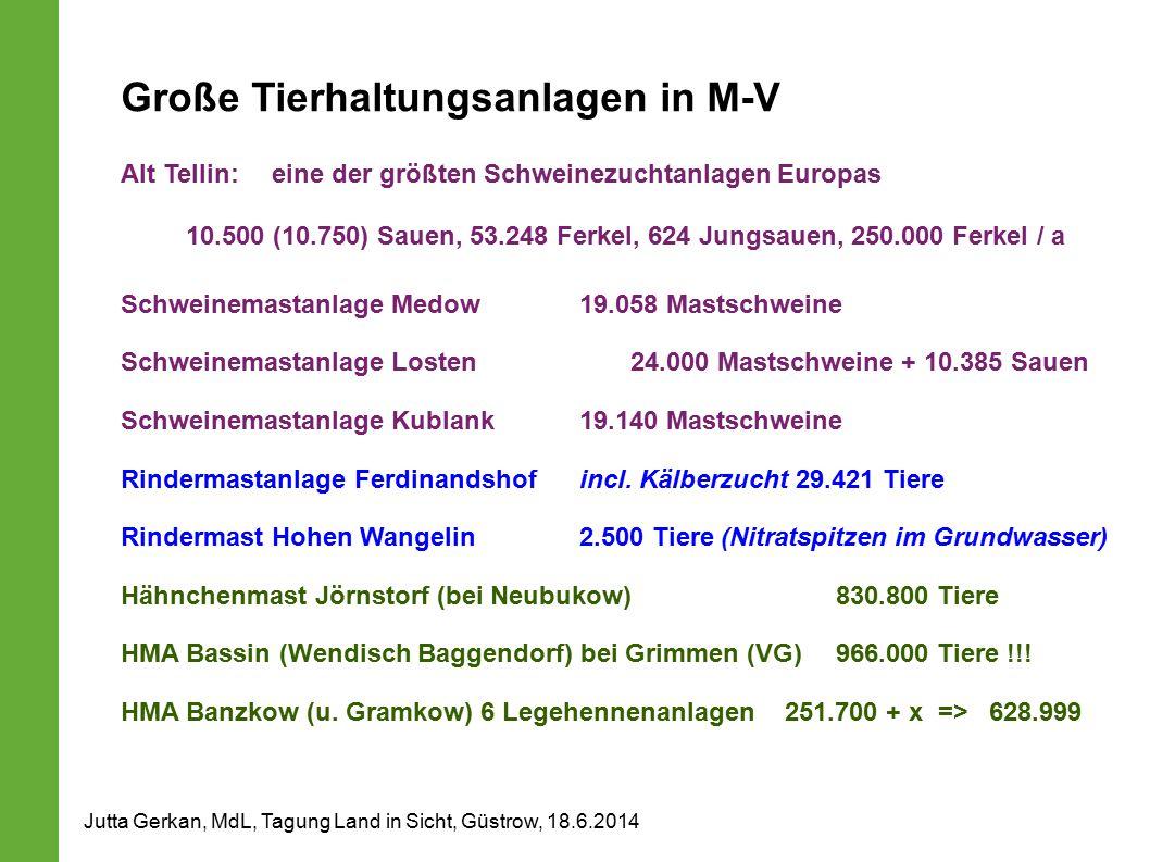 Große Tierhaltungsanlagen in M-V Alt Tellin: