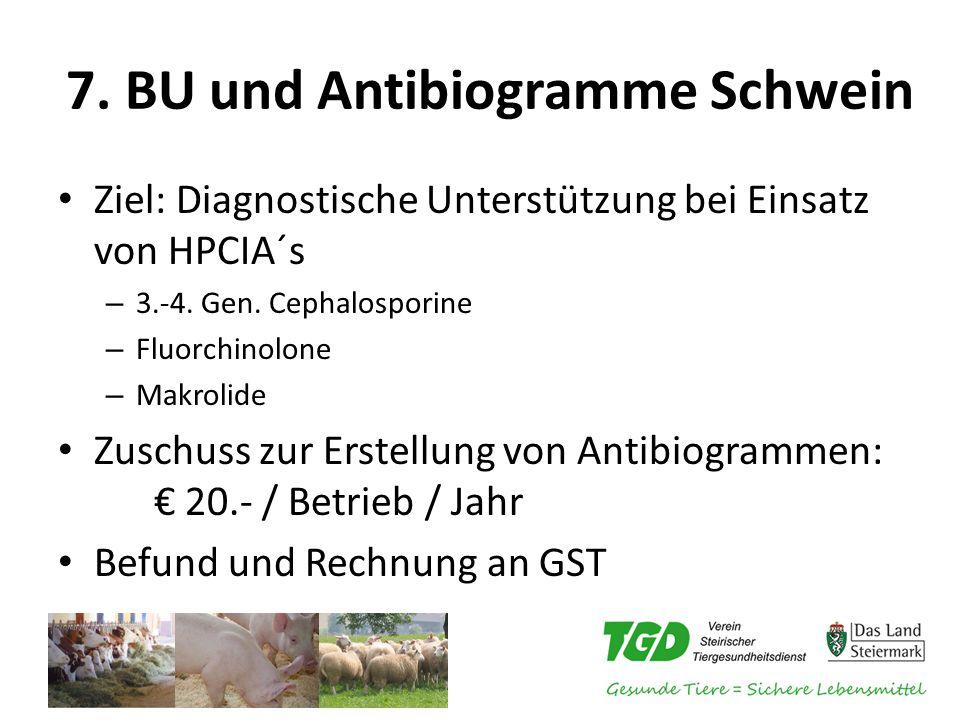 7. BU und Antibiogramme Schwein
