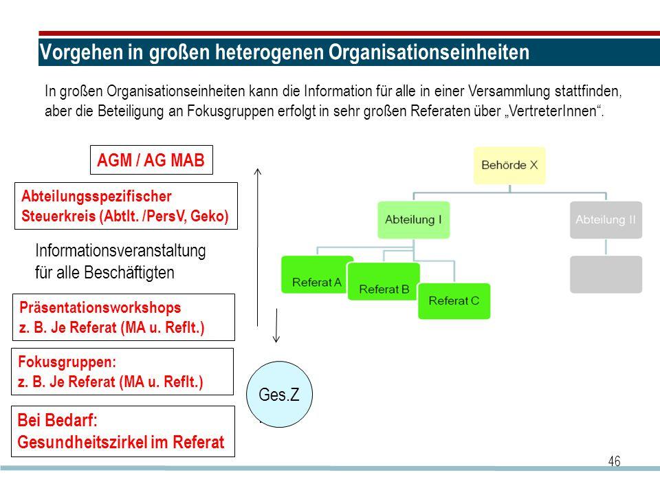 Vorgehen in großen heterogenen Organisationseinheiten