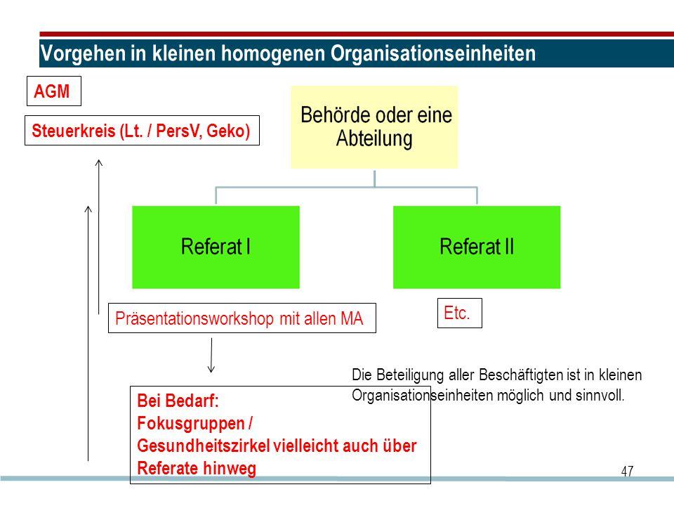 Vorgehen in kleinen homogenen Organisationseinheiten