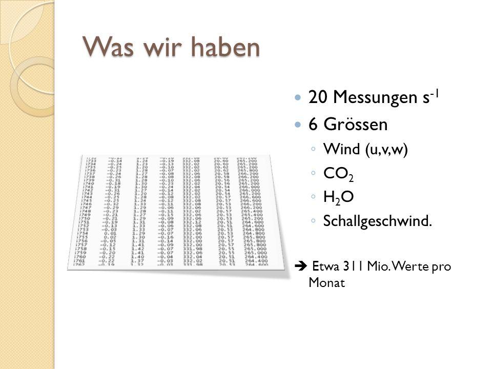 Was wir haben 20 Messungen s-1 6 Grössen Wind (u,v,w) CO2 H2O