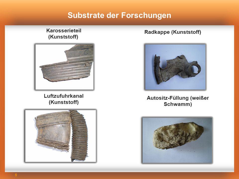 Substrate der Forschungen