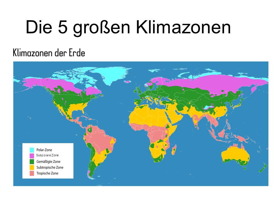 Die 5 großen Klimazonen Subpolare Zone