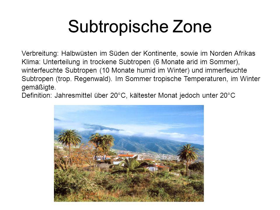Subtropische Zone Subtropische Zone