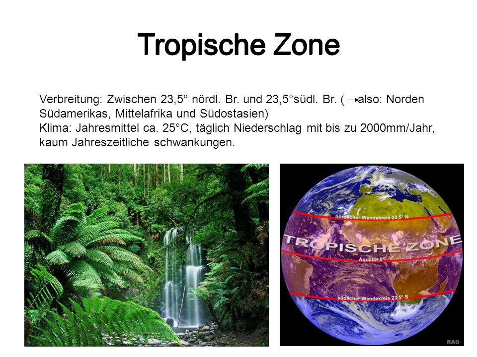 Tropische Zone Tropische Zone Tropische Zone Tropische Zone