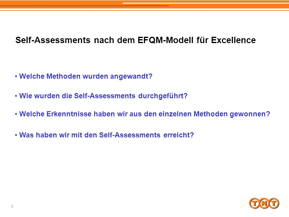 Self-Assessments nach dem EFQM-Modell für Excellence