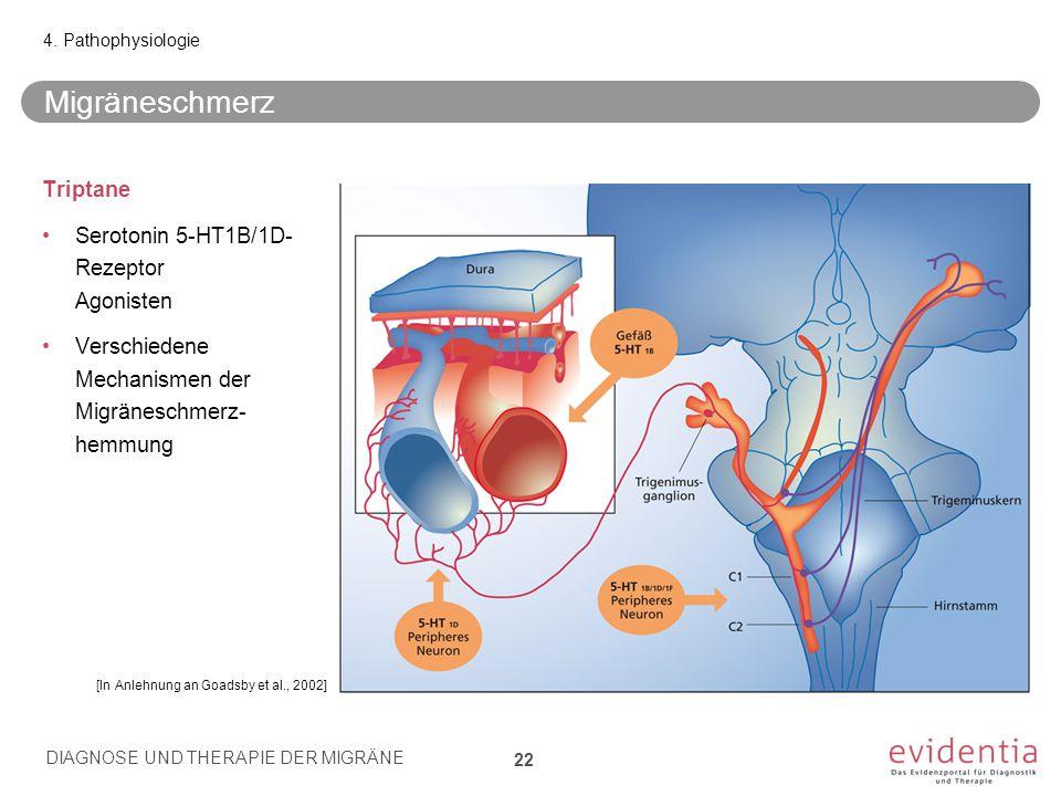 Migräneschmerz Triptane Serotonin 5-HT1B/1D-Rezeptor Agonisten