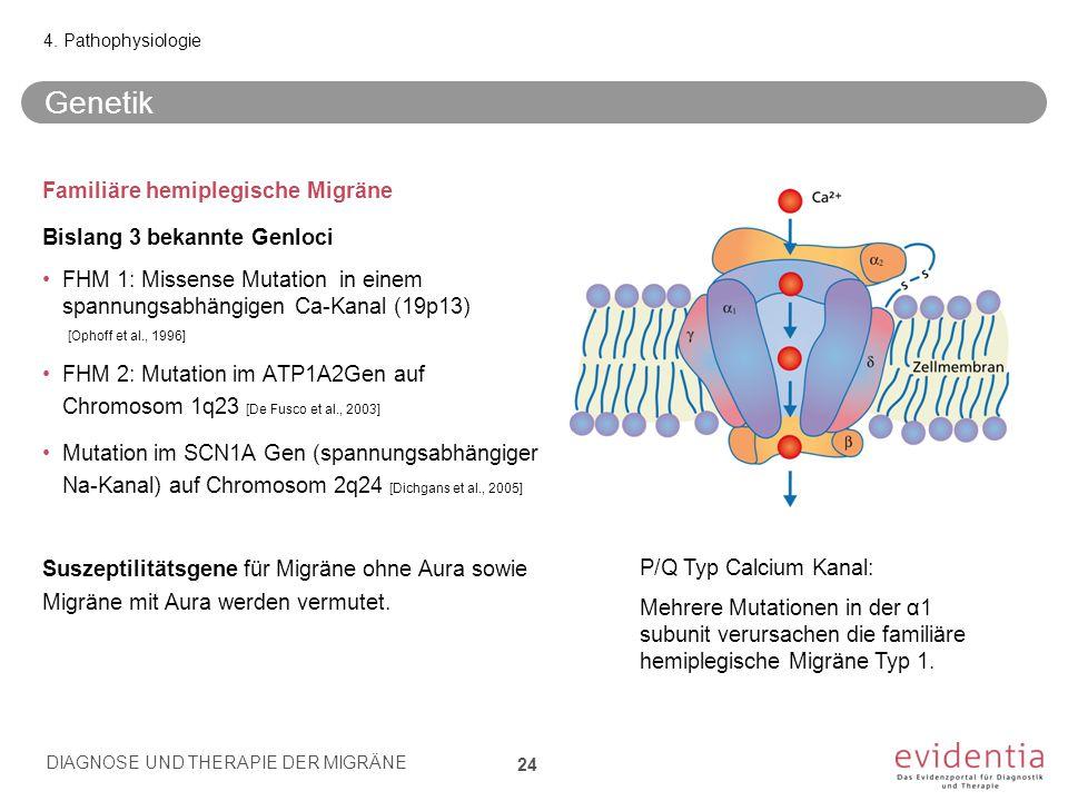 Genetik Familiäre hemiplegische Migräne Bislang 3 bekannte Genloci