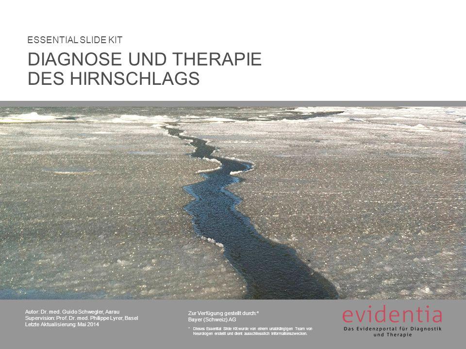 DIAGNOSE UND THERAPIE DES HIRNSCHLAGS