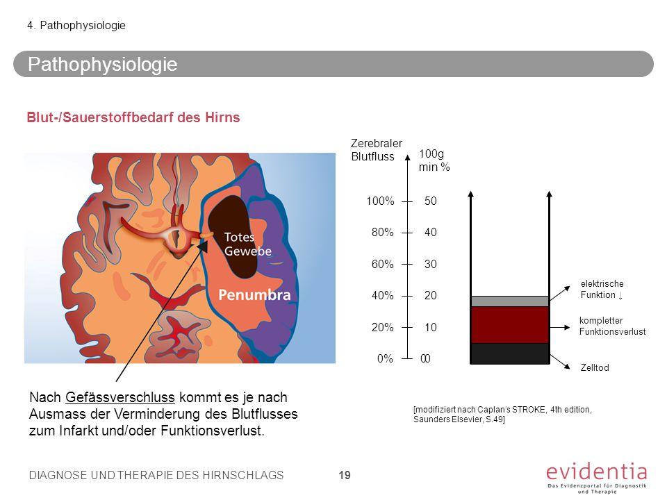 Pathophysiologie Blut-/Sauerstoffbedarf des Hirns