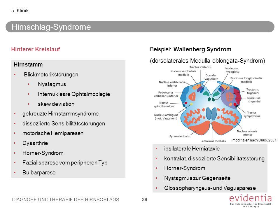 Hirnschlag-Syndrome Hinterer Kreislauf