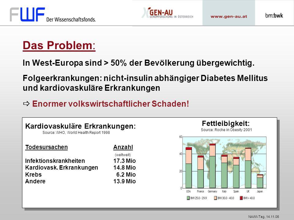 Das Problem: In West-Europa sind > 50% der Bevölkerung übergewichtig.