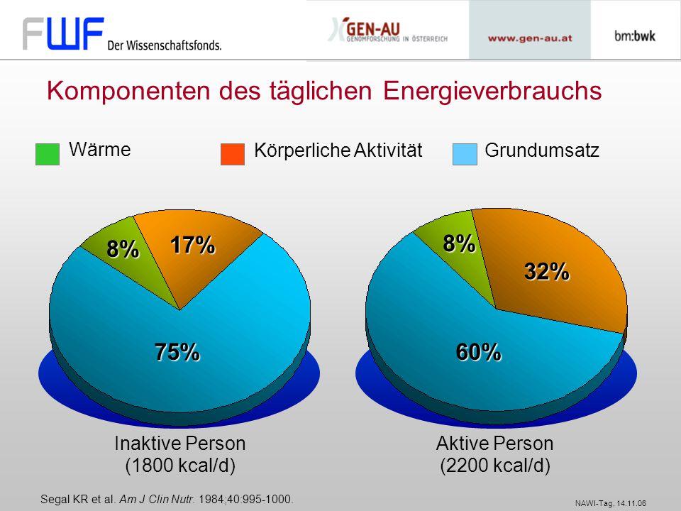 Komponenten des täglichen Energieverbrauchs