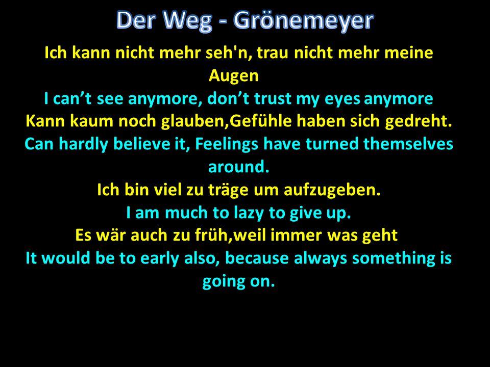 Der Weg - Grönemeyer Ich kann nicht mehr seh n, trau nicht mehr meine Augenn. I can't see anymore, don't trust my eyes anymore.
