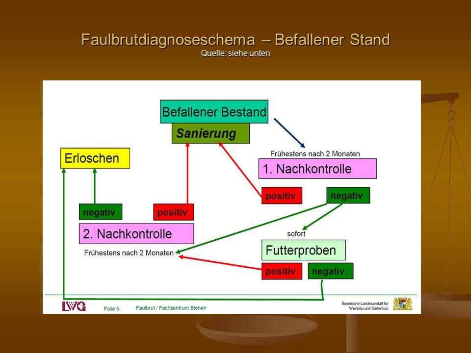 Faulbrutdiagnoseschema – Befallener Stand Quelle: siehe unten