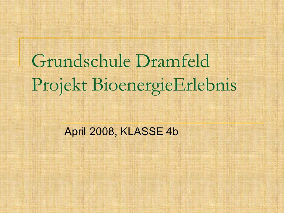 Grundschule Dramfeld Projekt BioenergieErlebnis